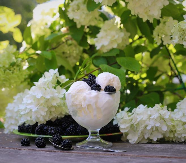 ice-cream-1689090_1920